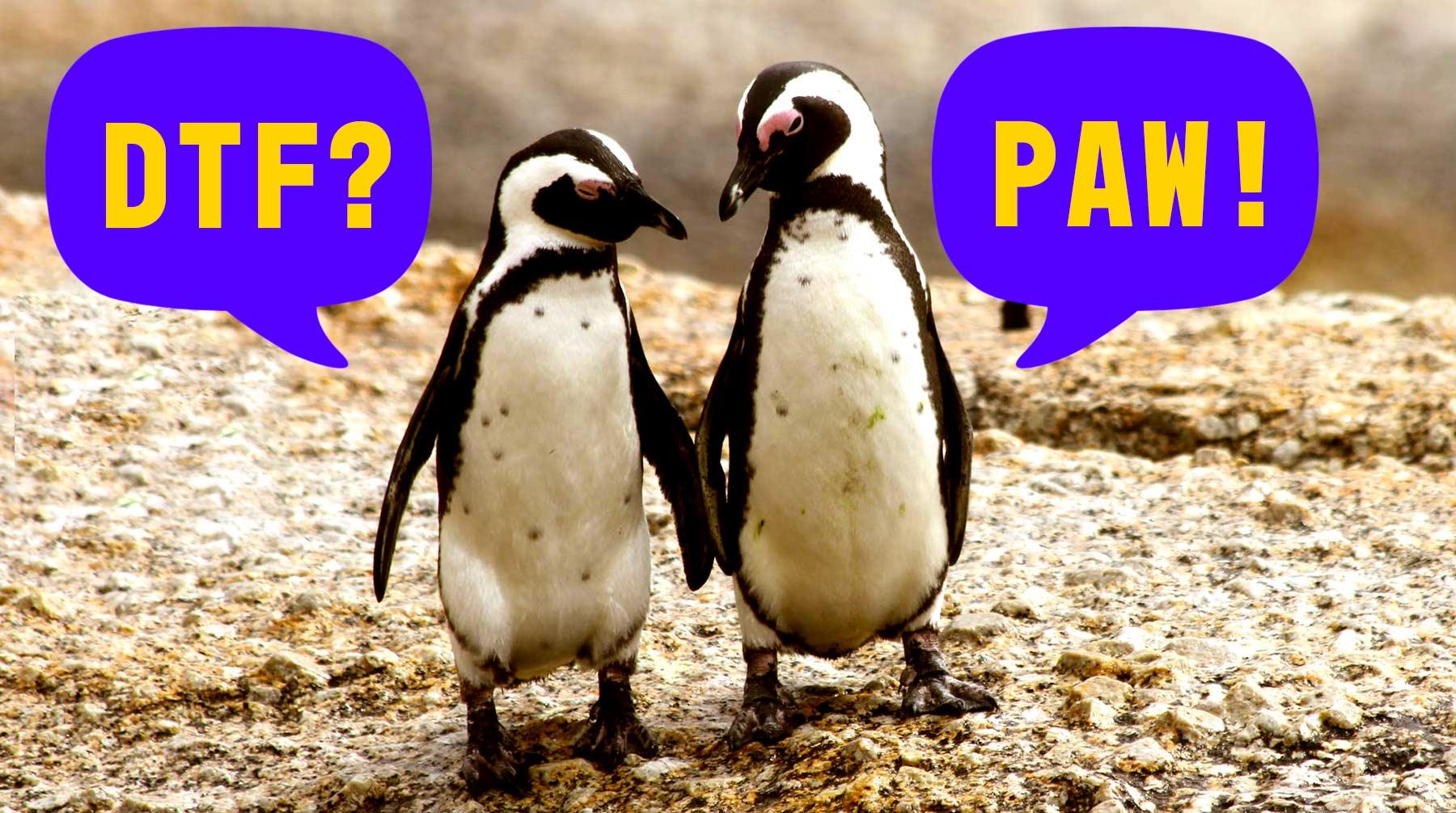 """Två pingviner som går bredvid varandra. En pingvin frågar """"DTF?"""" och den andra svarar """"PAW!""""."""